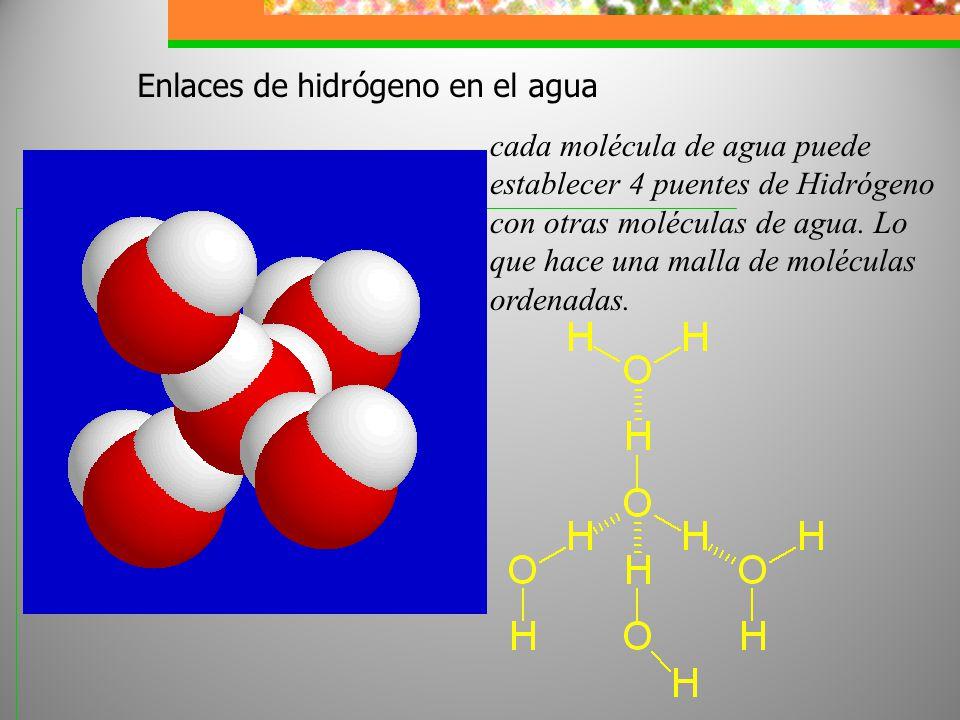 Enlaces de hidrógeno en el agua