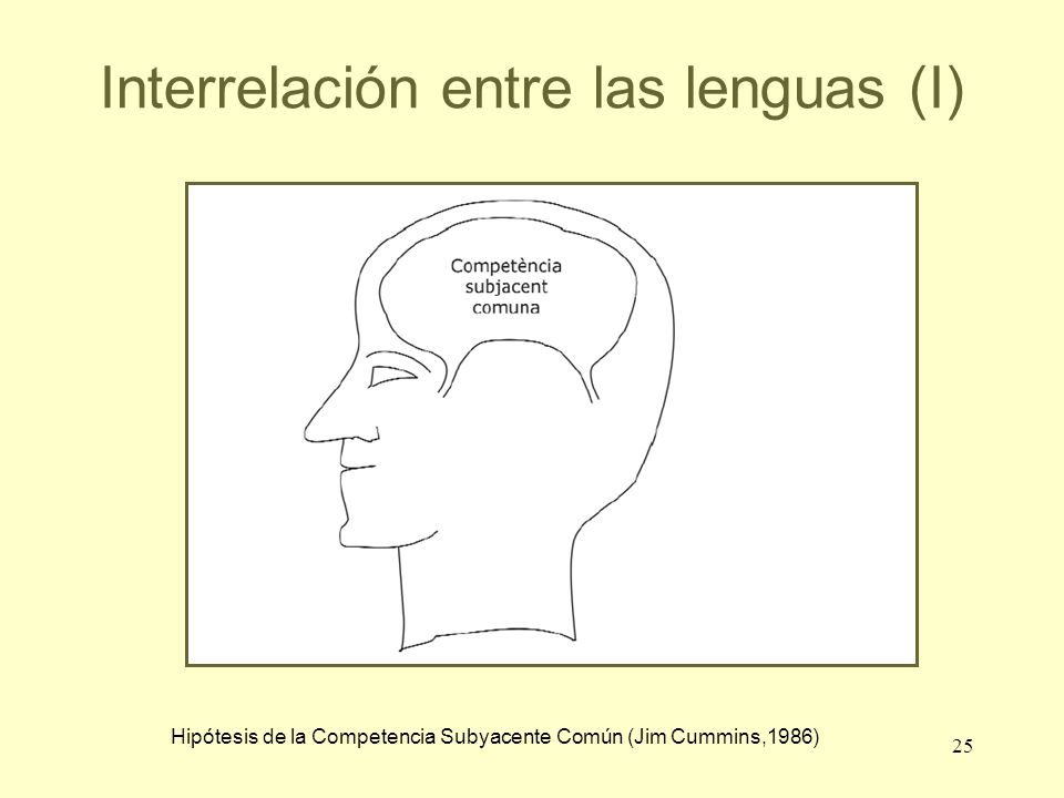 Interrelación entre las lenguas (I)