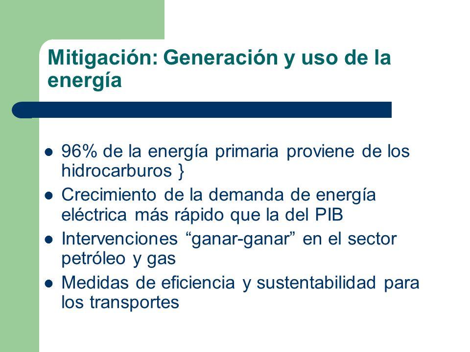 Mitigación: Generación y uso de la energía