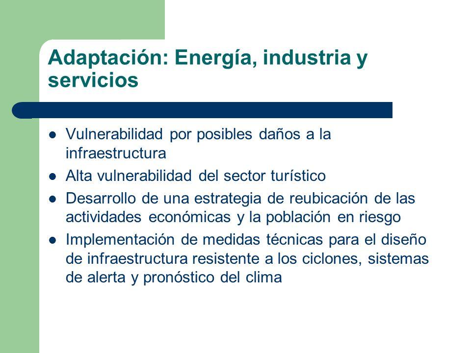 Adaptación: Energía, industria y servicios
