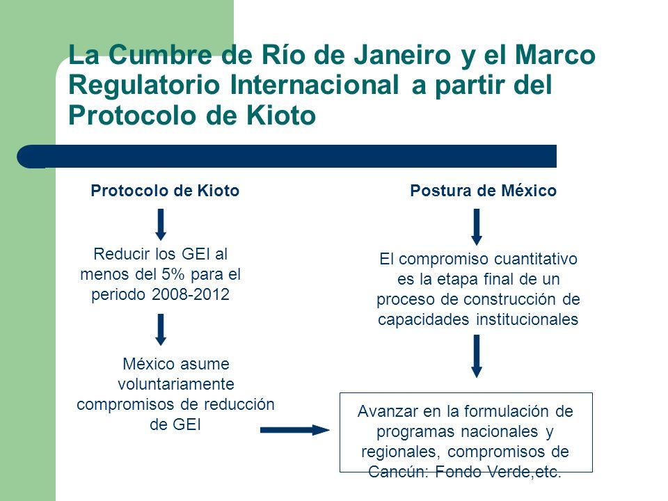 La Cumbre de Río de Janeiro y el Marco Regulatorio Internacional a partir del Protocolo de Kioto