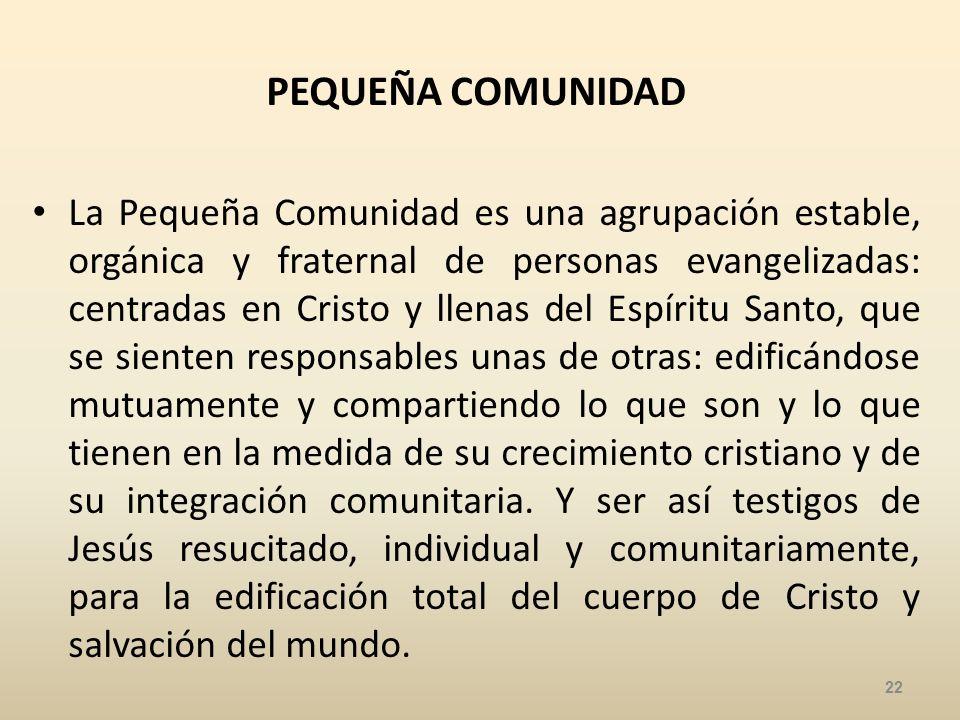 PEQUEÑA COMUNIDAD