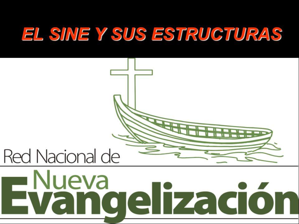 EL SINE Y SUS ESTRUCTURAS