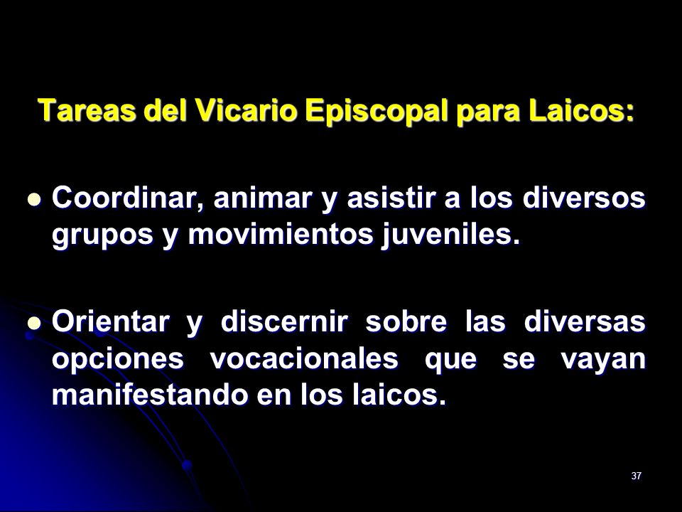 Tareas del Vicario Episcopal para Laicos: