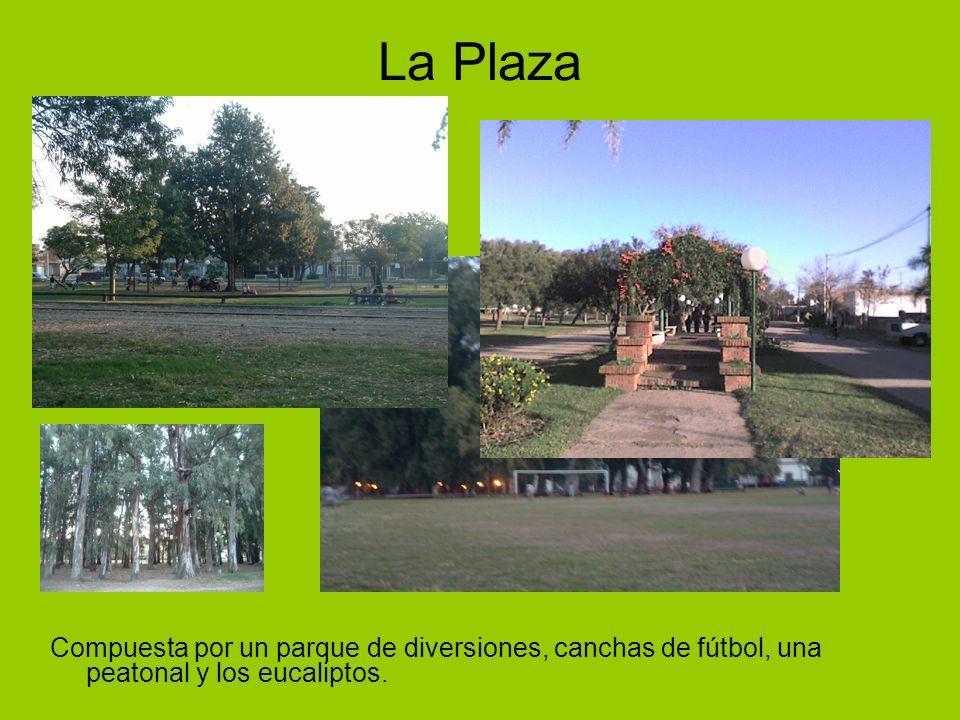 La Plaza Compuesta por un parque de diversiones, canchas de fútbol, una peatonal y los eucaliptos.
