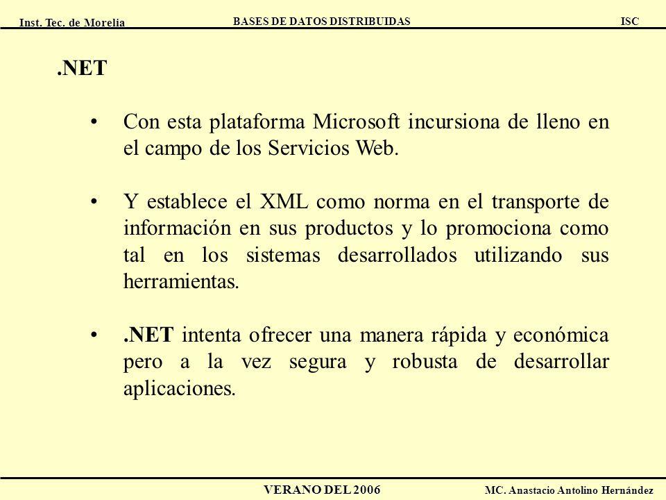 .NET Con esta plataforma Microsoft incursiona de lleno en el campo de los Servicios Web.