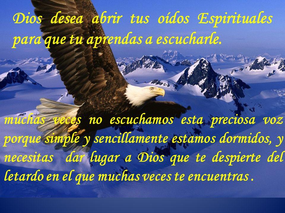 Dios desea abrir tus oídos Espirituales para que tu aprendas a escucharle.