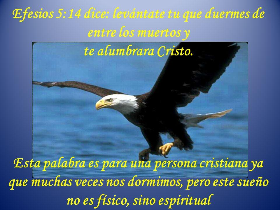 Efesios 5:14 dice: levántate tu que duermes de entre los muertos y te alumbrara Cristo.
