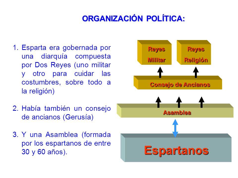 Espartanos ORGANIZACIÓN POLÍTICA: