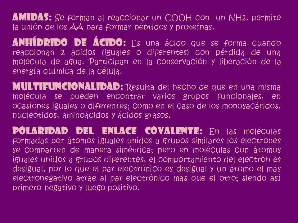 AMIDAS: Se forman al reaccionar un COOH con un NH2