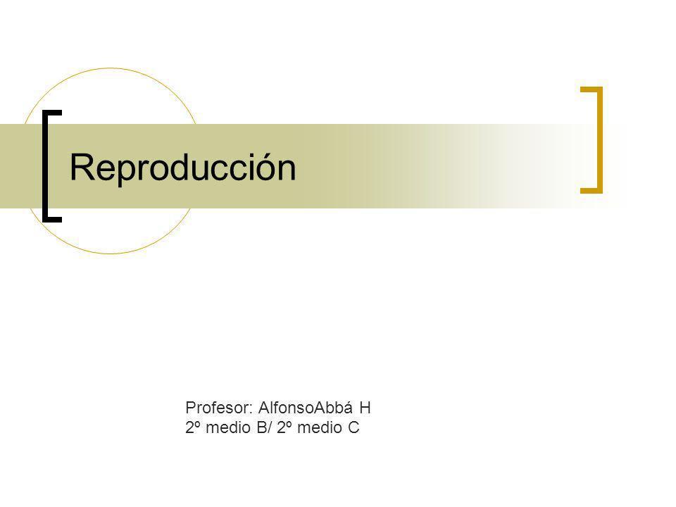 Profesor: AlfonsoAbbá H 2º medio B/ 2º medio C