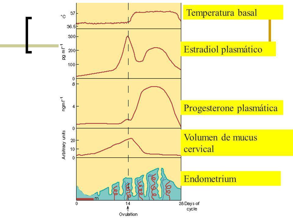 Temperatura basal Estradiol plasmático. Progesterone plasmática.