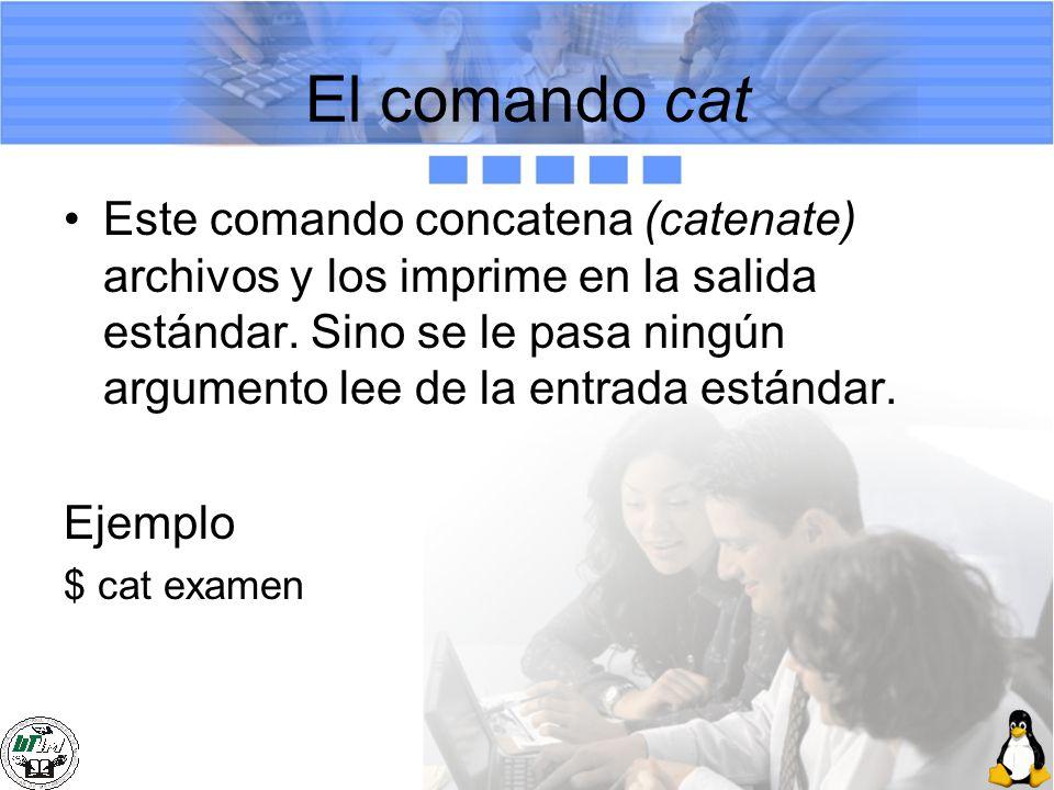 El comando cat