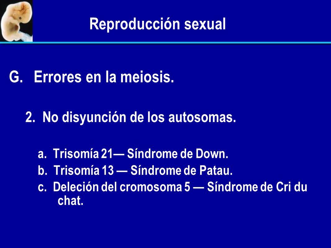 Reproducción sexual Errores en la meiosis.
