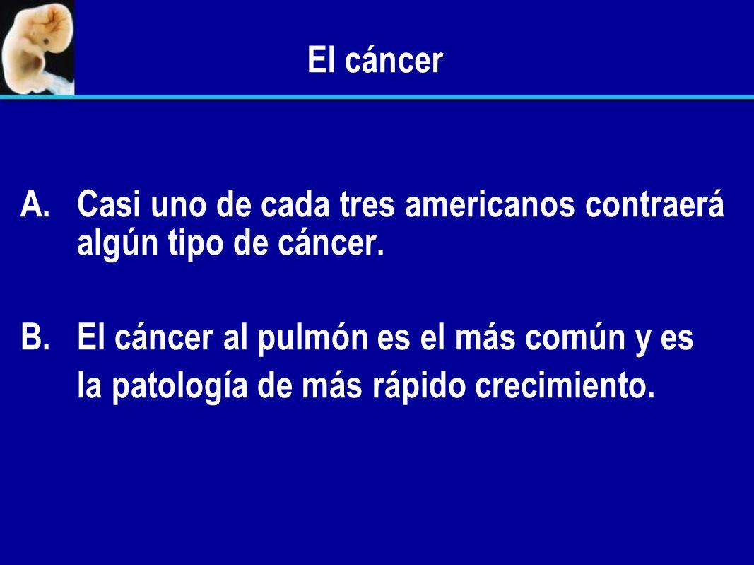 El cáncer Casi uno de cada tres americanos contraerá algún tipo de cáncer. El cáncer al pulmón es el más común y es.