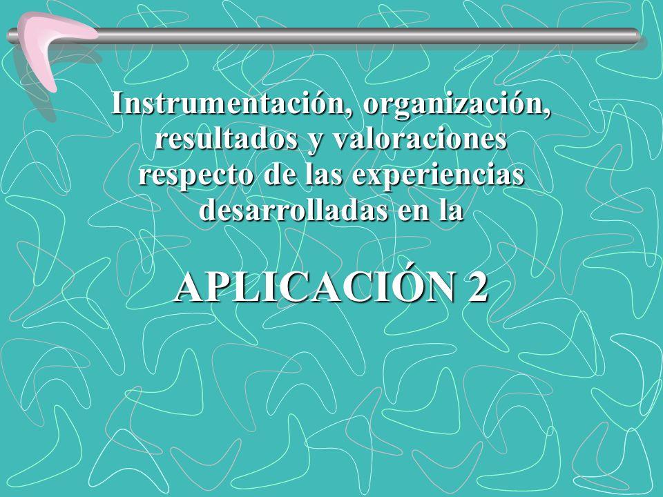 APLICACIÓN 2 Instrumentación, organización, resultados y valoraciones