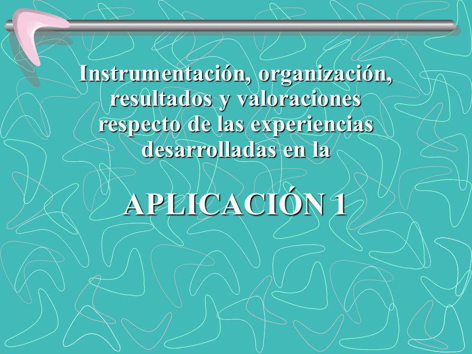 APLICACIÓN 1 Instrumentación, organización, resultados y valoraciones