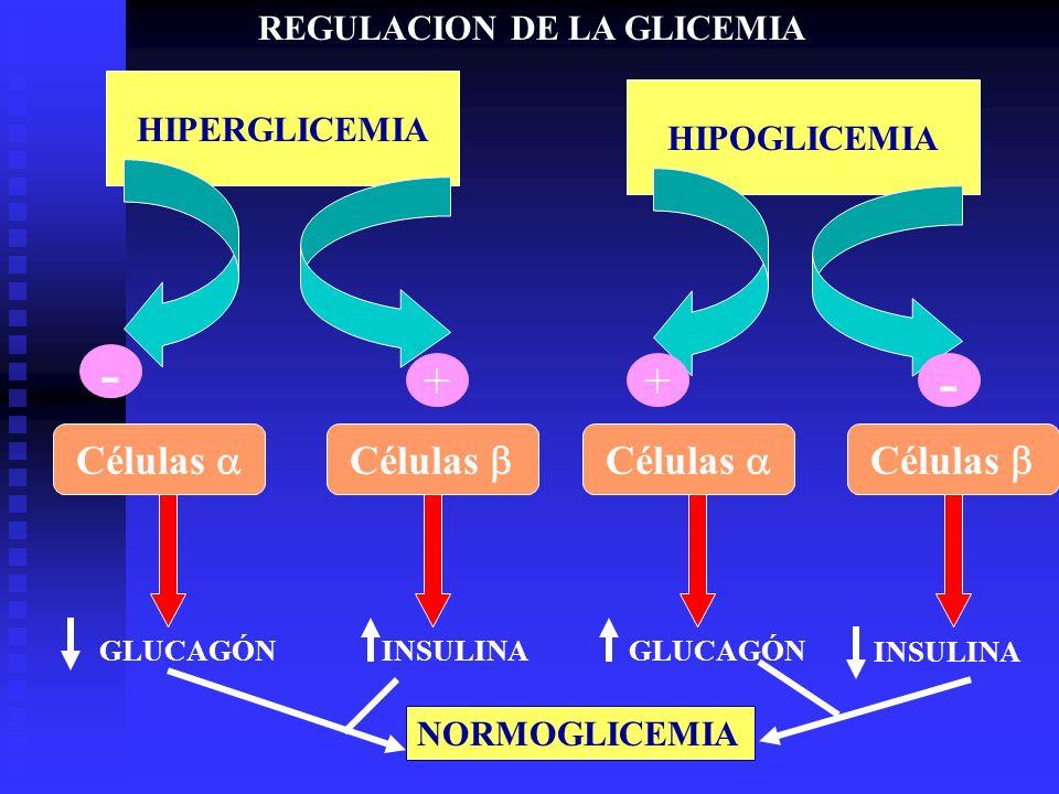 - - + + Células a Células b Células a Células b