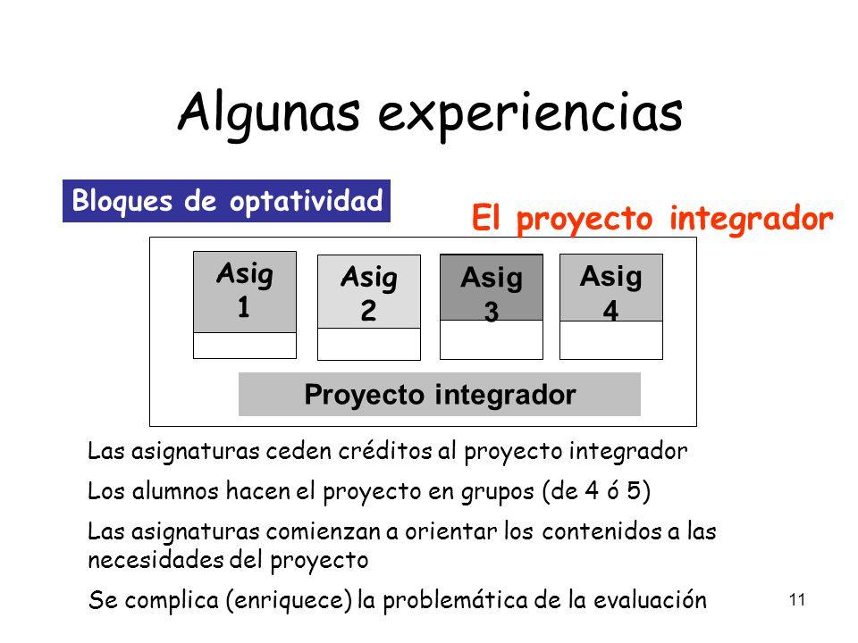 Algunas experiencias El proyecto integrador Bloques de optatividad