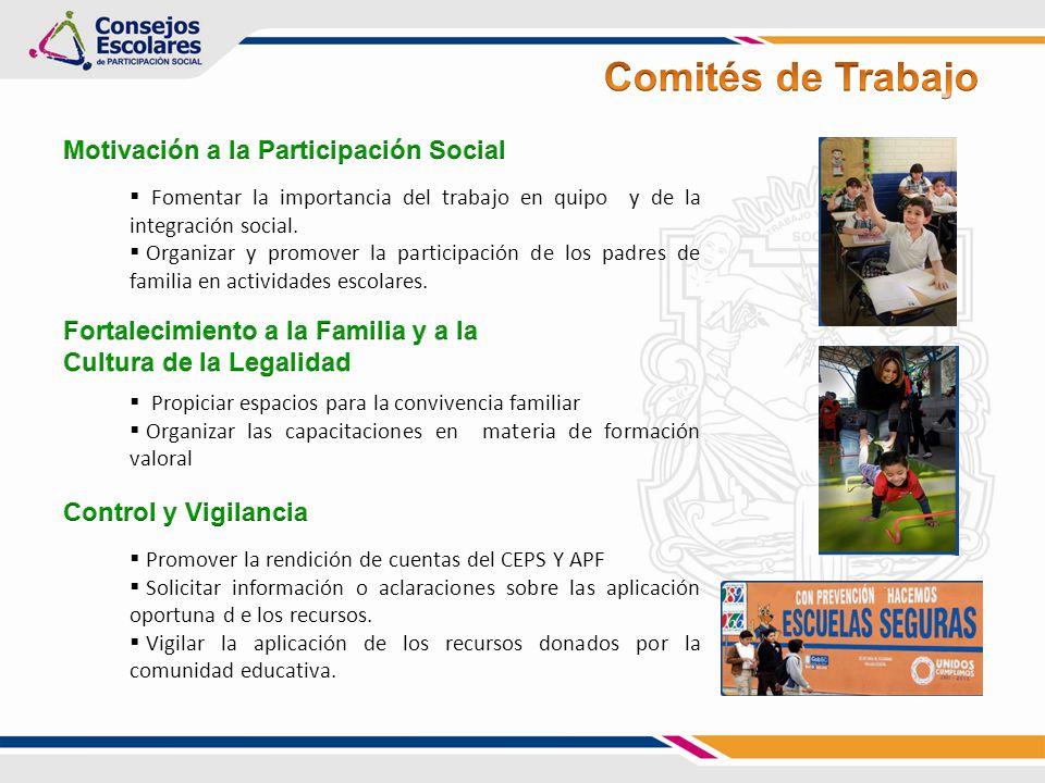 Comités de Trabajo Motivación a la Participación Social