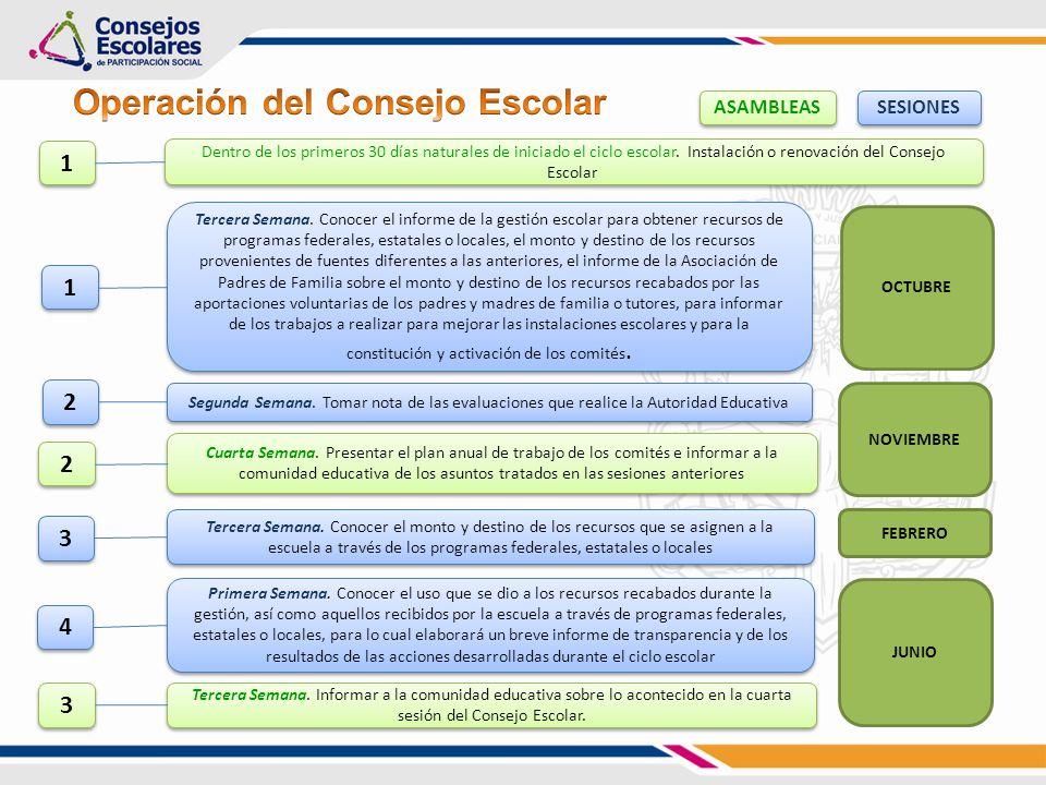 constitución y activación de los comités.