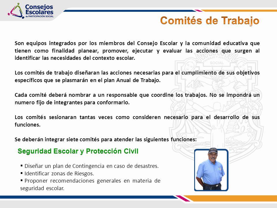 Comités de Trabajo Seguridad Escolar y Protección Civil