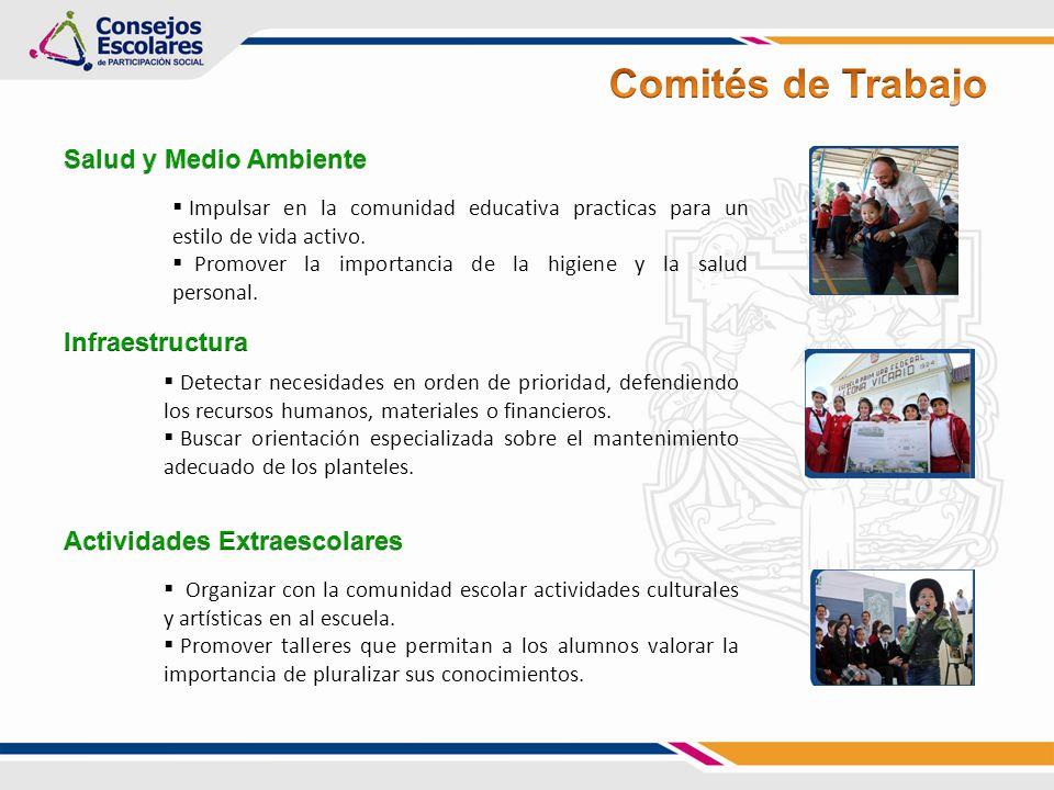 Comités de Trabajo Salud y Medio Ambiente Infraestructura