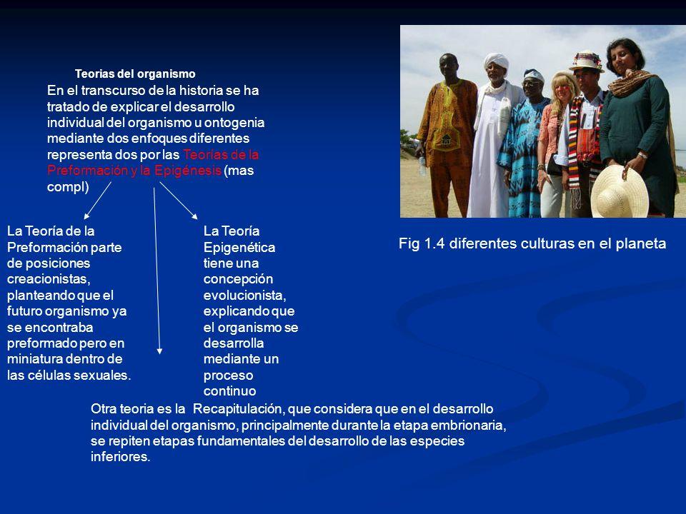 Fig 1.4 diferentes culturas en el planeta