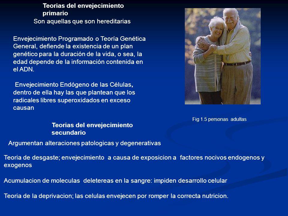Teorias del envejecimiento primario