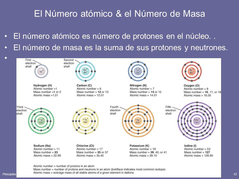 El Número atómico & el Número de Masa