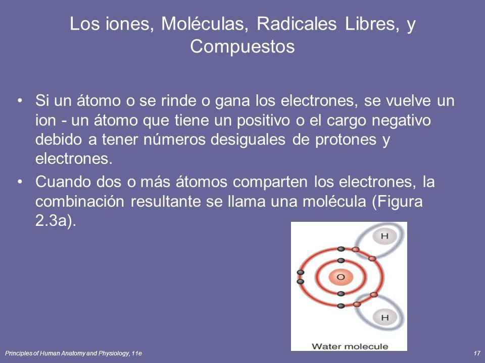 Los iones, Moléculas, Radicales Libres, y Compuestos