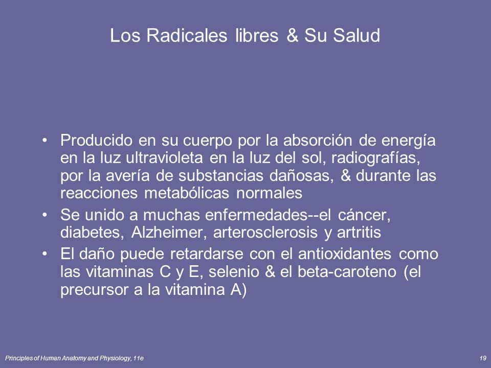 Los Radicales libres & Su Salud