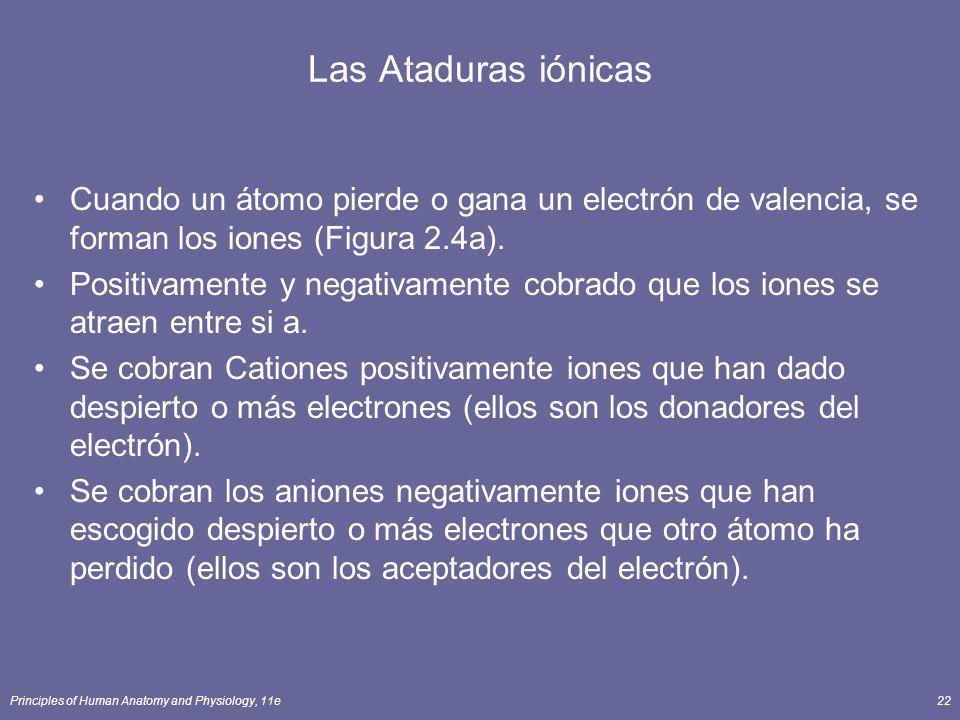 Las Ataduras iónicas Cuando un átomo pierde o gana un electrón de valencia, se forman los iones (Figura 2.4a).