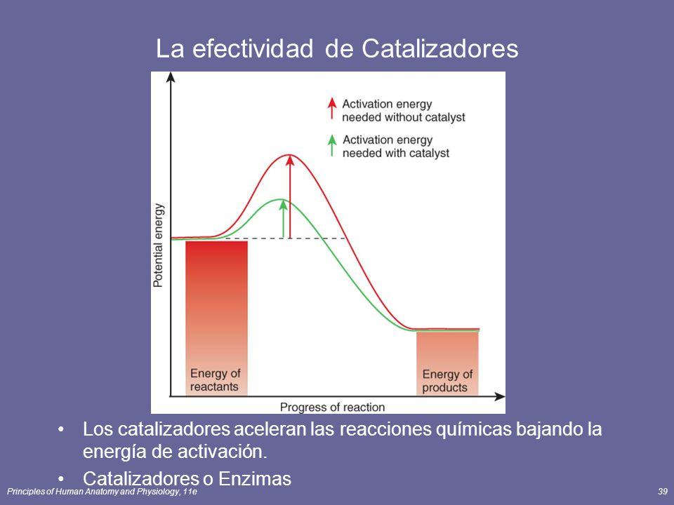La efectividad de Catalizadores
