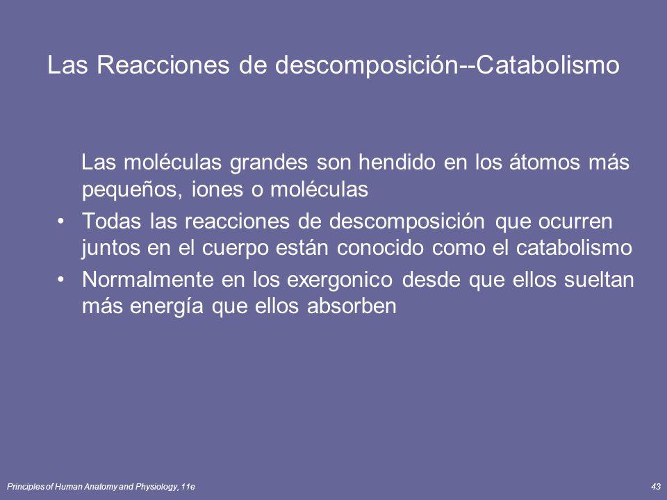Las Reacciones de descomposición--Catabolismo