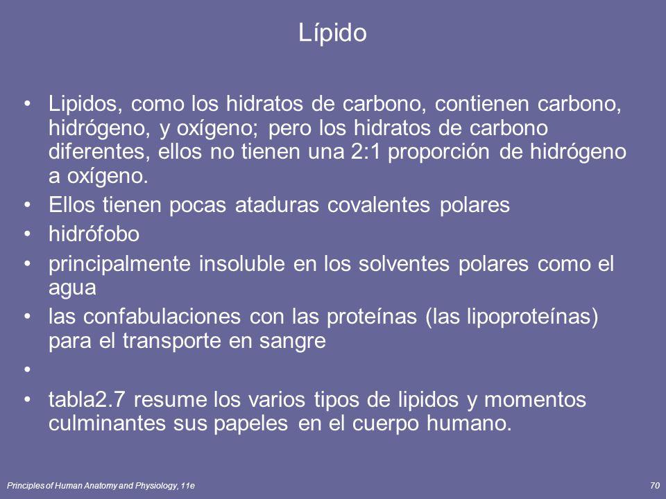 Lípido