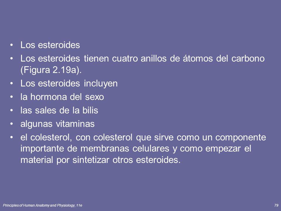 Los esteroides incluyen la hormona del sexo las sales de la bilis