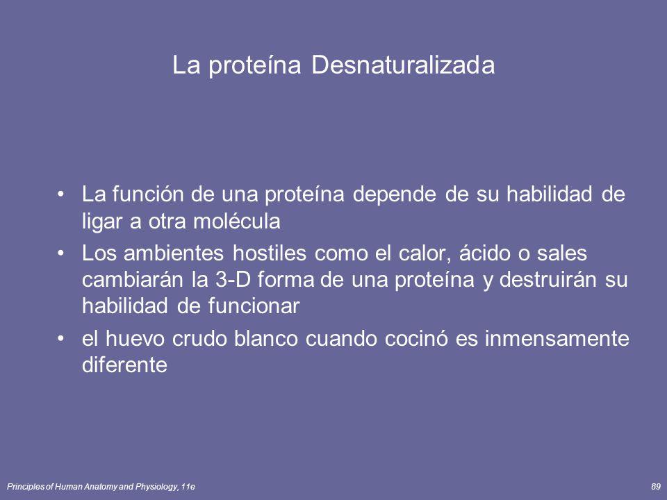 La proteína Desnaturalizada