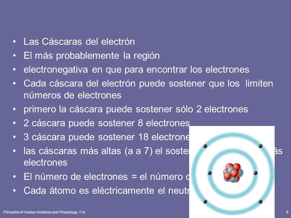 Las Cáscaras del electrón El más probablemente la región