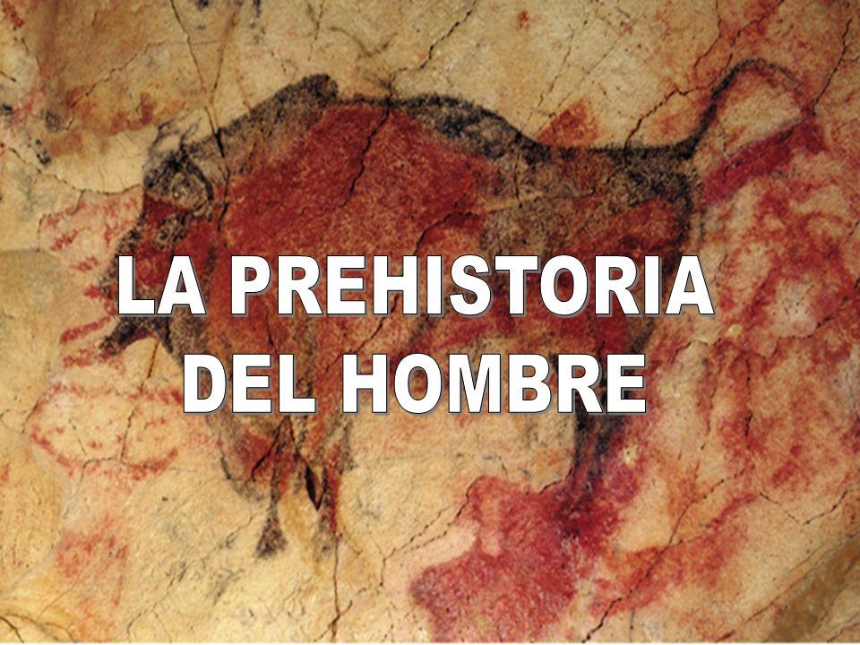 LA PREHISTORIA DEL HOMBRE