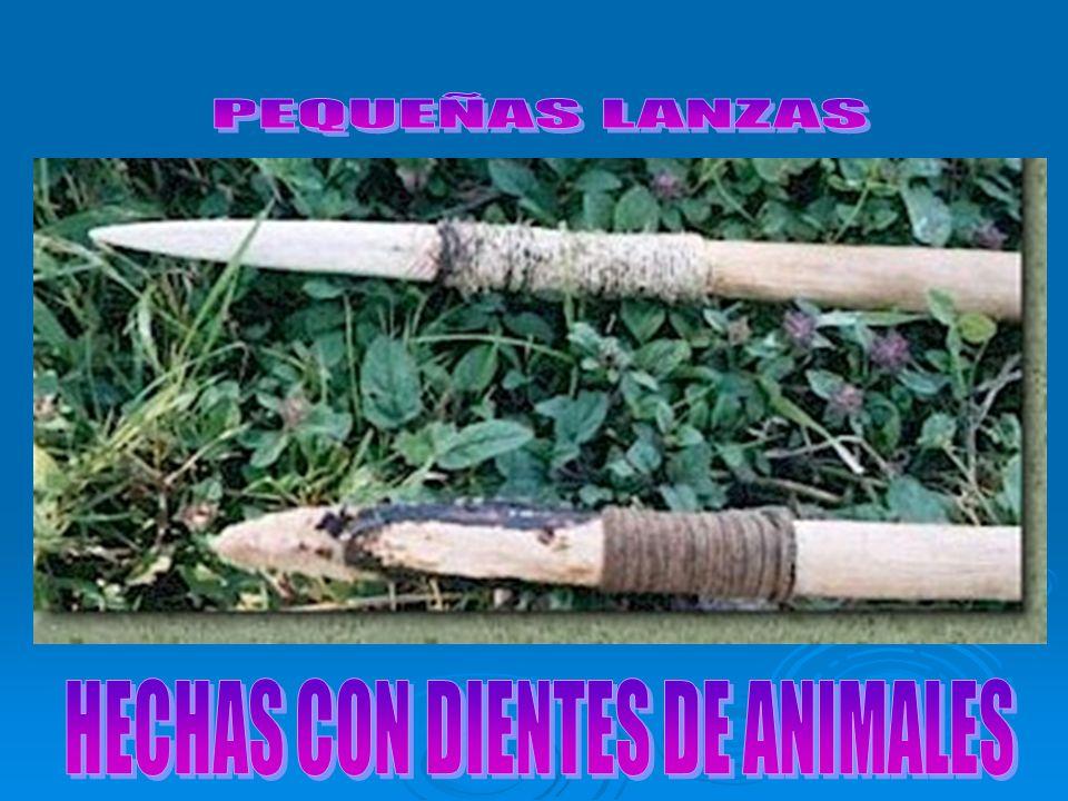 HECHAS CON DIENTES DE ANIMALES