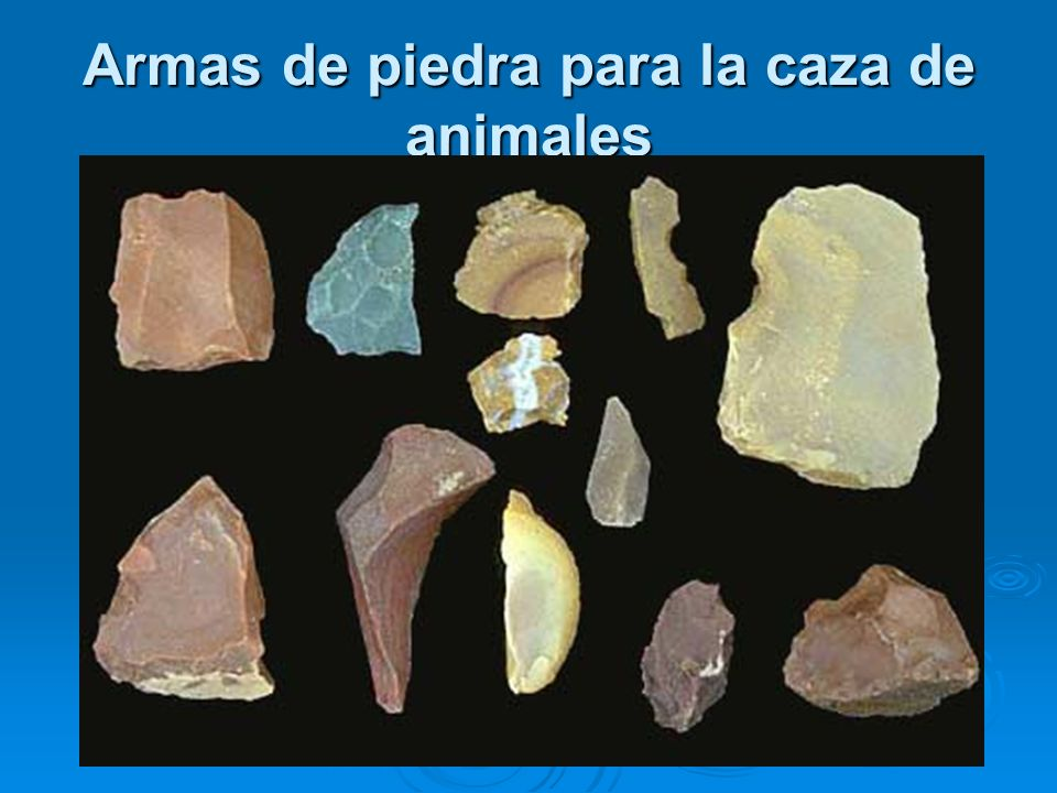 Armas de piedra para la caza de animales