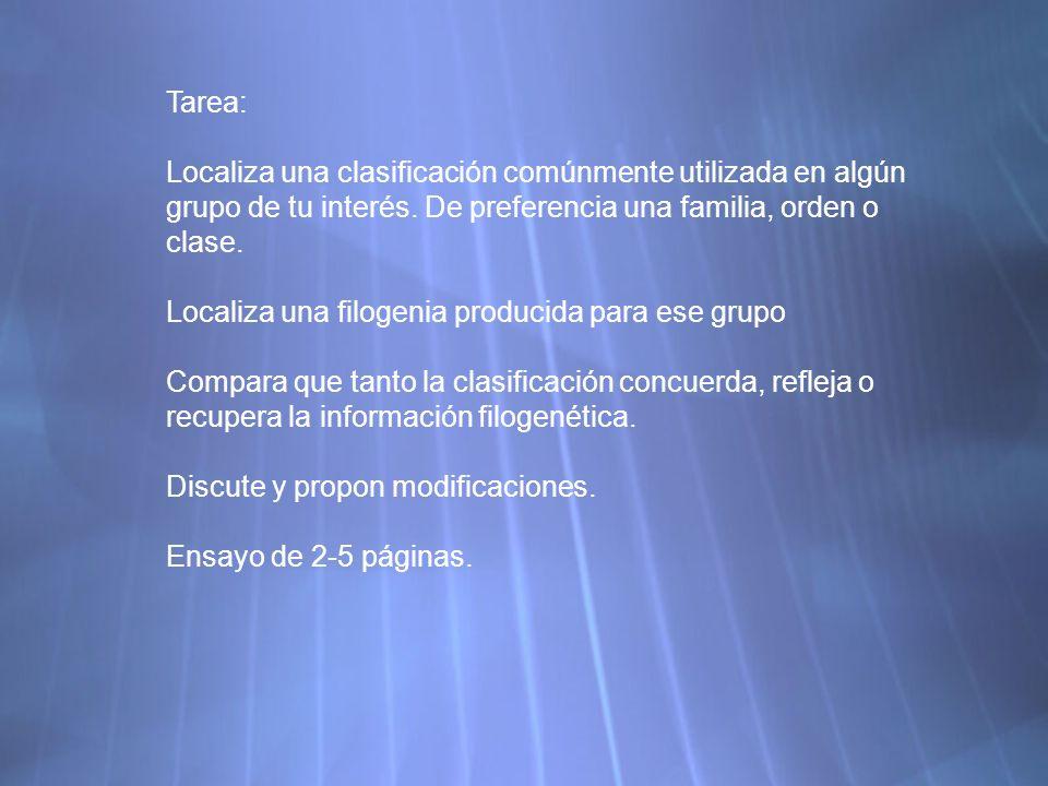Tarea: Localiza una clasificación comúnmente utilizada en algún grupo de tu interés. De preferencia una familia, orden o clase.