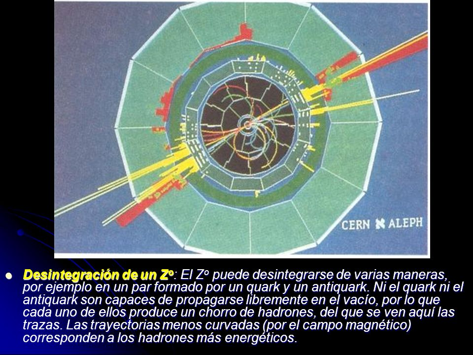 Desintegración de un Zo: El Zo puede desintegrarse de varias maneras, por ejemplo en un par formado por un quark y un antiquark.
