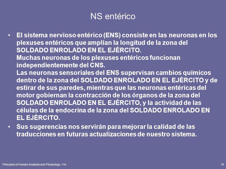 NS entérico
