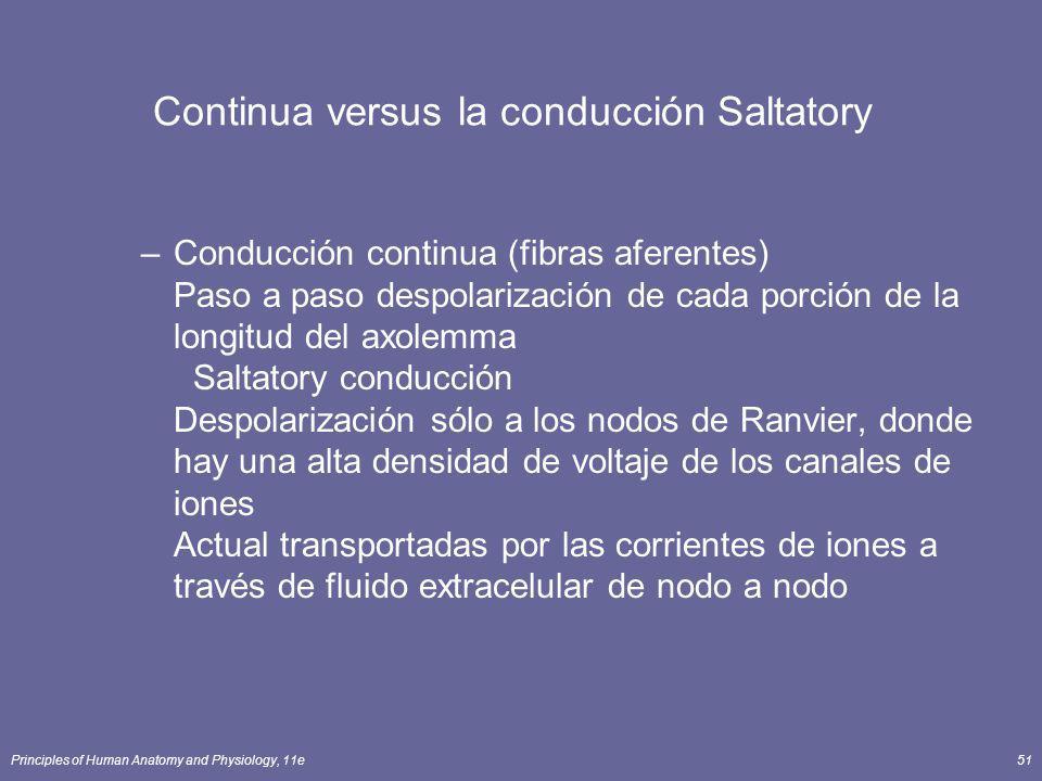 Continua versus la conducción Saltatory