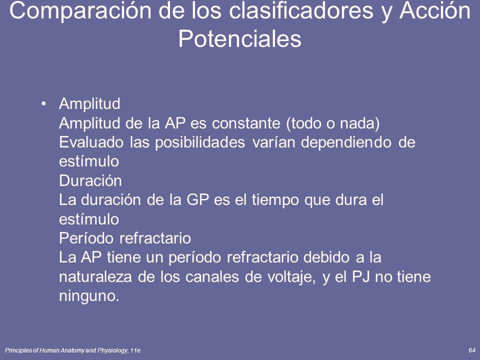 Comparación de los clasificadores y Acción Potenciales
