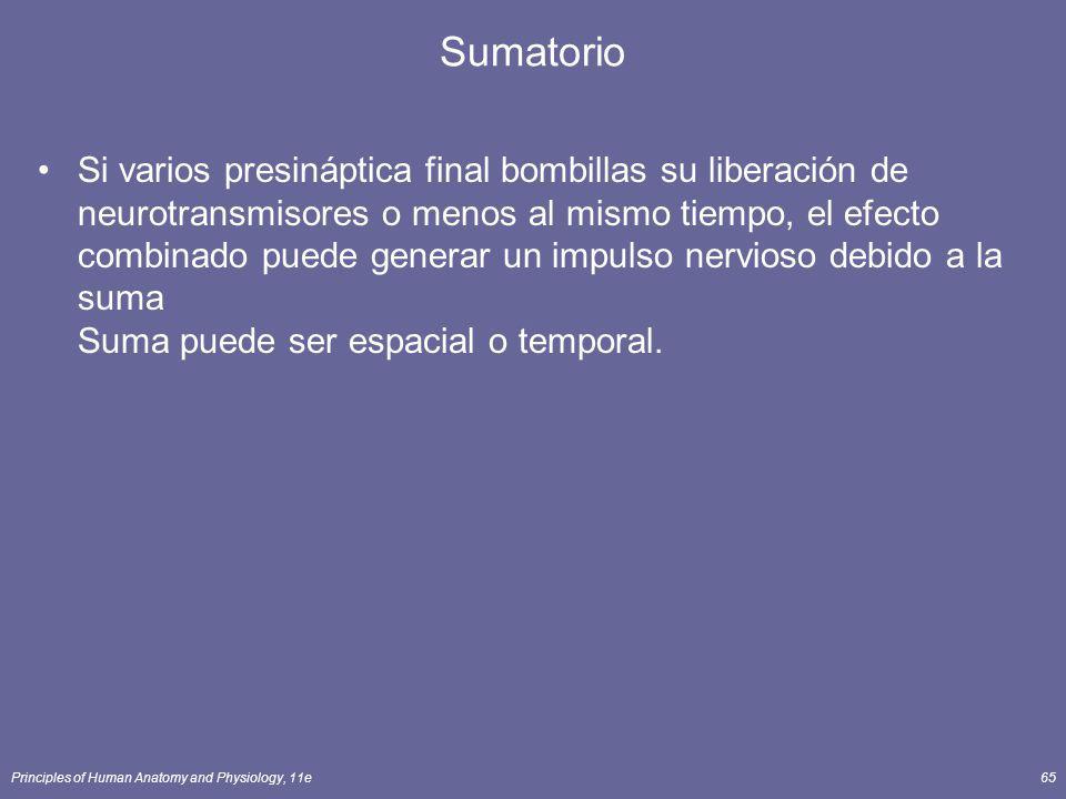 Sumatorio