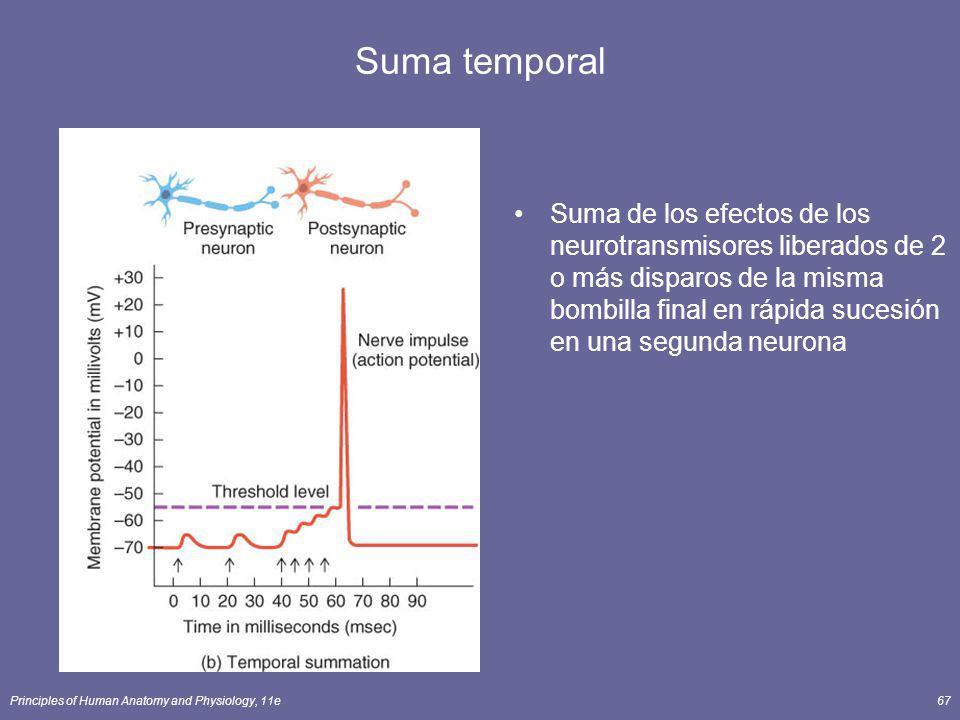 Suma temporal