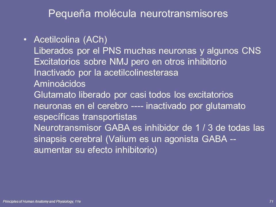 Pequeña molécula neurotransmisores